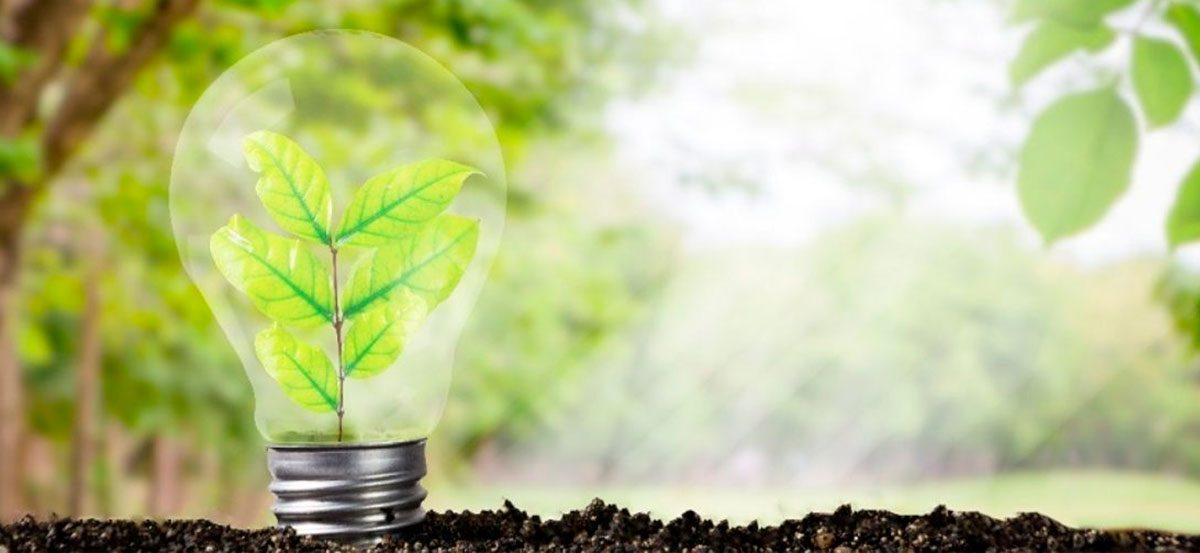 El desarrollo sustentable, un motor del que somos parte
