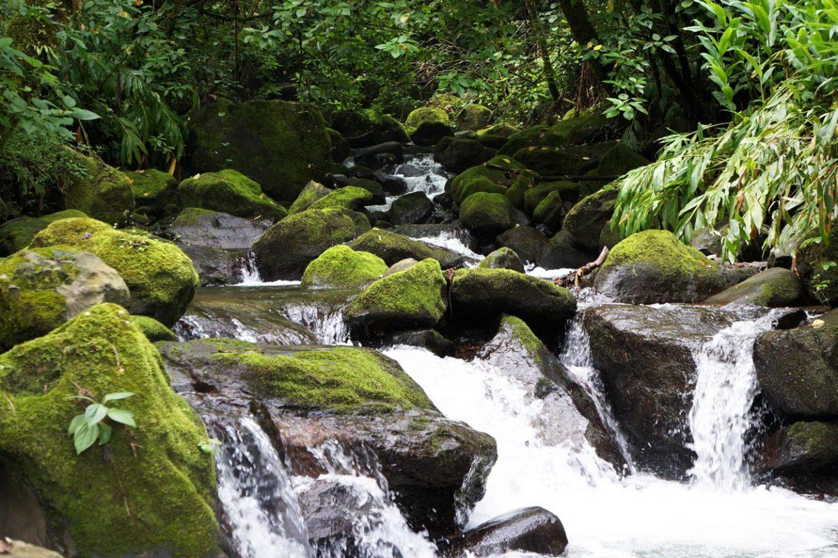 Cuidar el Agua: Compromiso de Autlán
